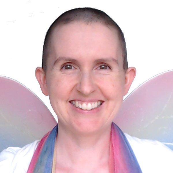 Nikki H Stokes - The Data Fairy
